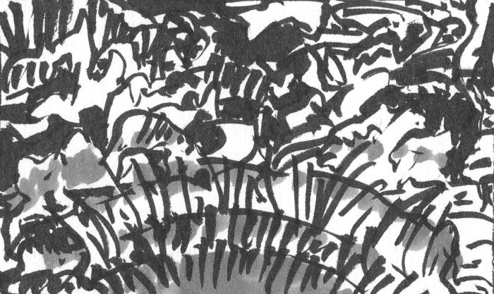 A loose brush pen sketch in black ink with random lines and marks that appear to be a landscape.