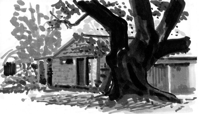 A sketch of a shed behind the silhouette of a large tree in the foreground.